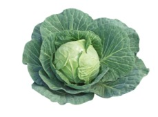 cabbages grown in minerally enriched soil